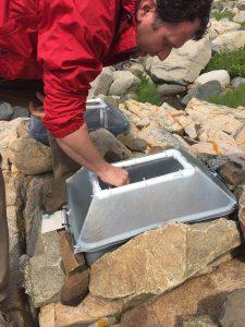 chris nadeau working in artificial rock pool