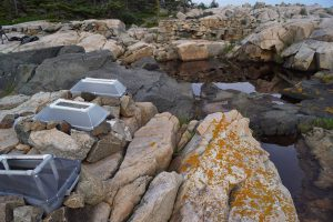 photo of rock pools
