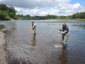 two people taking water samples in a lake