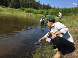 Katherine Ko dips a net into a stream